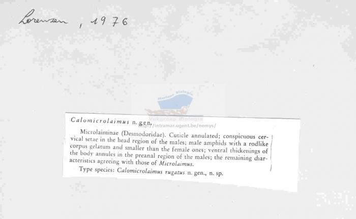Calomicrolaimus
