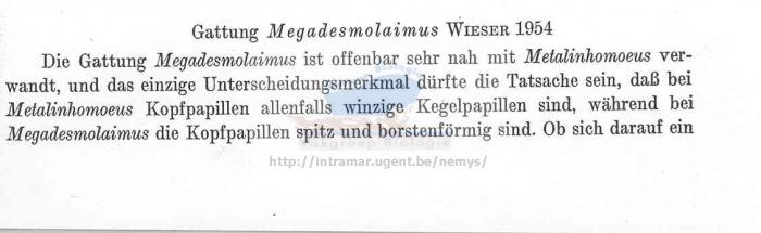 Megadesmolaimus