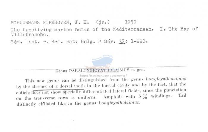 Paralongicyatholaimus