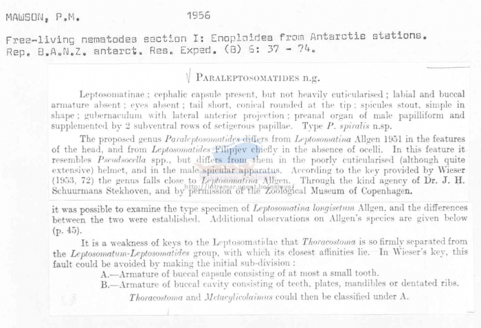 Paraleptosomatides