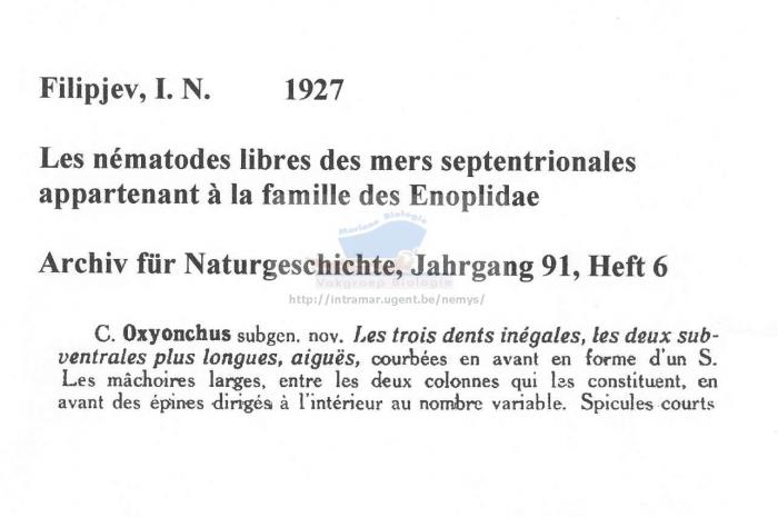 Oxyonchus dentatus
