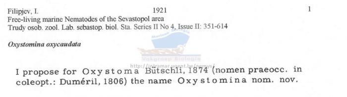 Oxystomina oxycaudata