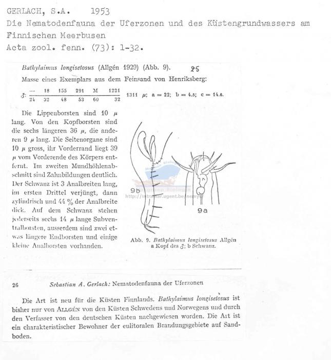 Bathylaimus longisetosus