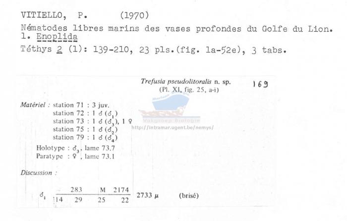 Trefusia pseudolitoralis