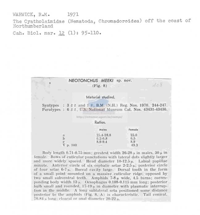 Neotonchus meeki