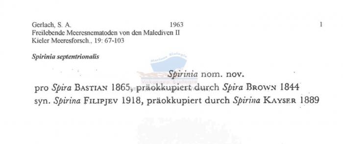 Spirinia septentrionalis