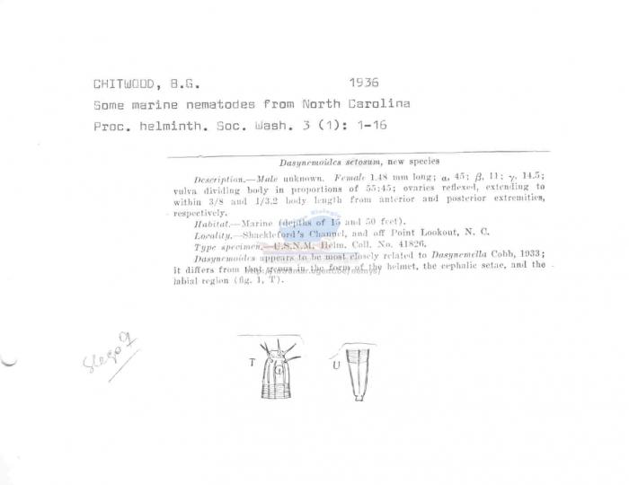 Dasynemoides setosus