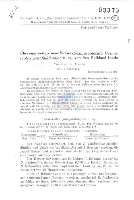 Desmoscolex parafalklandiae
