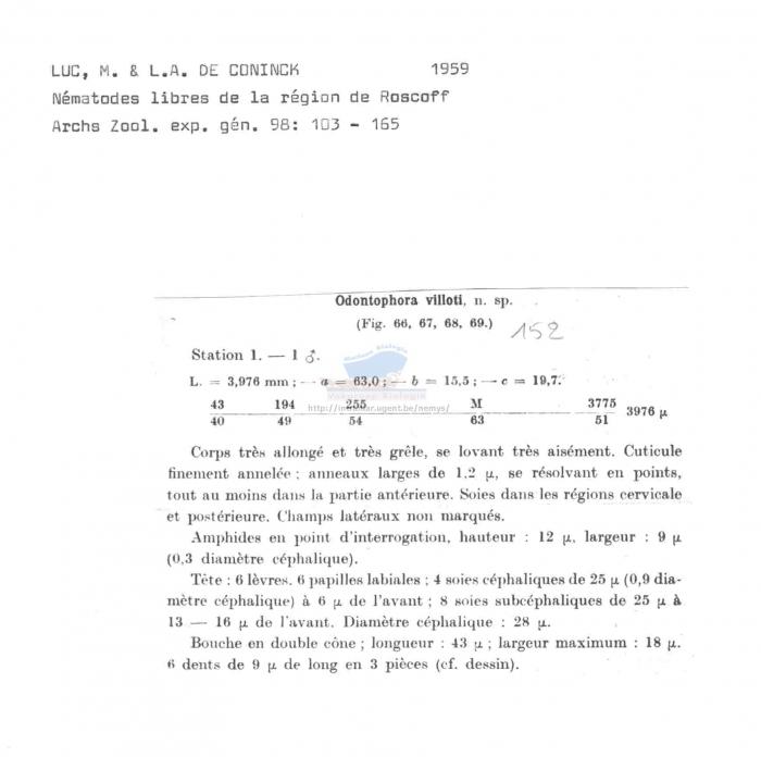 Odontophora villoti