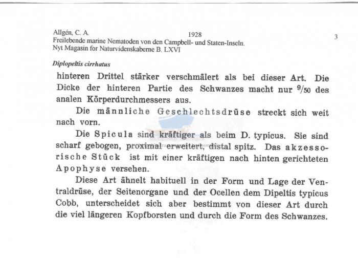 Diplopeltis cirrhatus