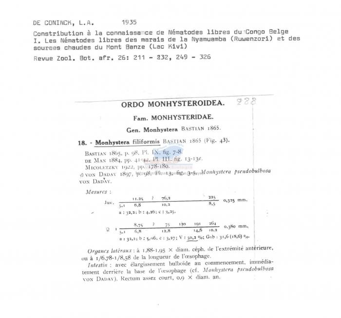 Monhystera filiformis