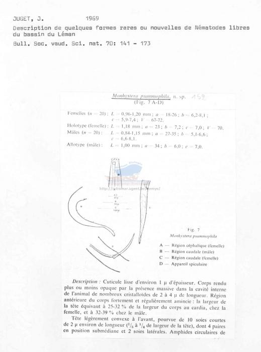 Monhystera psammophila