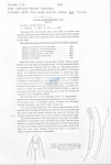 Viscosia pseudosegmentata