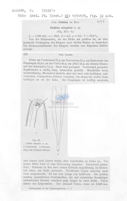 Cobbia simplex