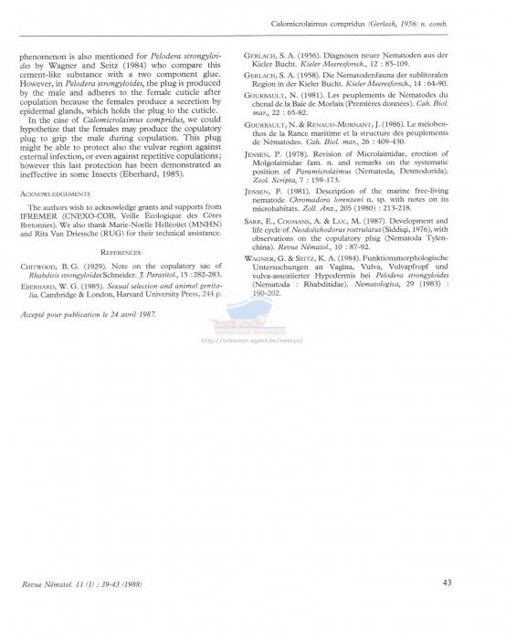Calomicrolaimus compridus