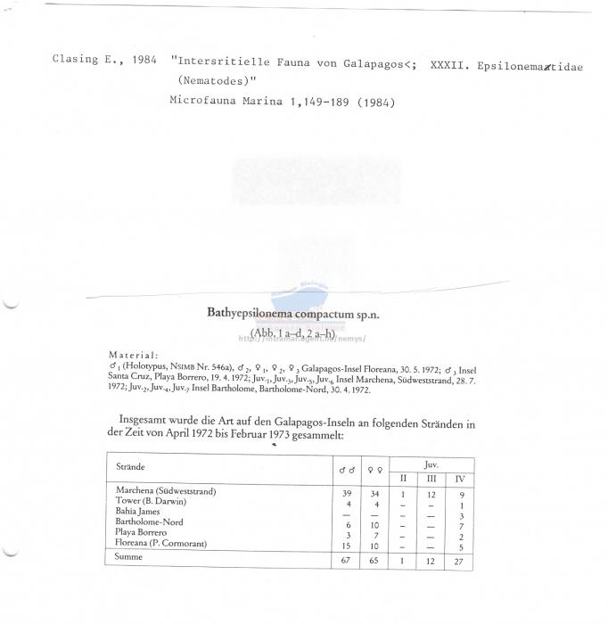 Bathyepsilonema compactum