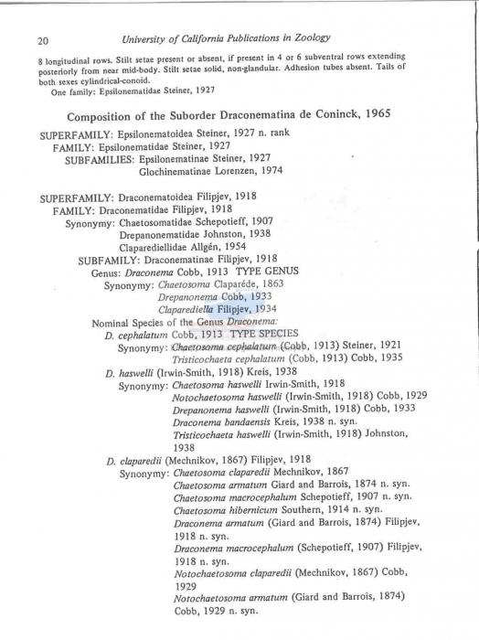 Draconematoidea