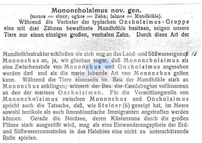 Mononcholaimus