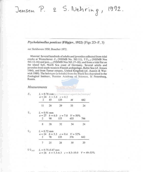 Ptycholaimellus ponticus